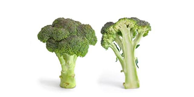 Brokoli iddiası doktorları kızdırdı tarifi