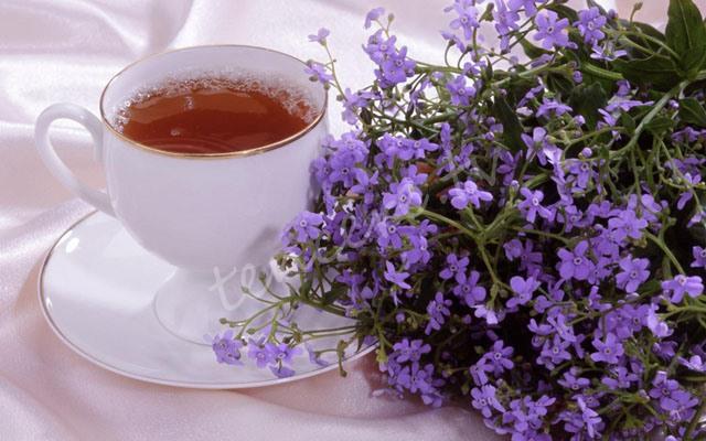 Gripten koruyan 4 bitki çayı tarifi