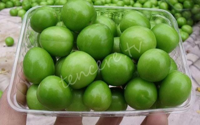 Yeşil erik bağışıklığı güçlendiriyor tarifi