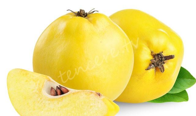 Eczane gibi meyve: ayva tarifi