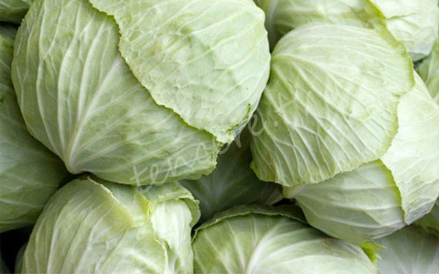 Mucize besin kaynağı lahana tarifi